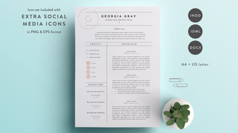 professional cv layout