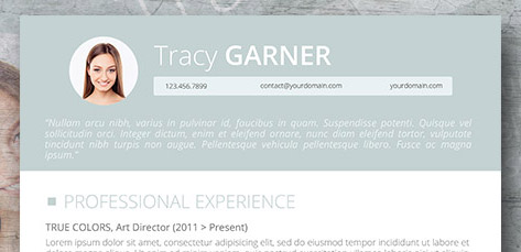 professional resume header