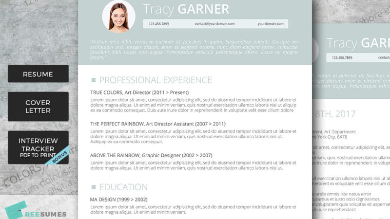 resume template pack go team